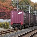 Photos: 秋色の宇都宮貨物(タ)付近を行く高速貨物4093レ