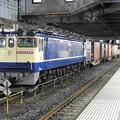 Photos: EF65 2081原色機牽引4073レ小山11番停車