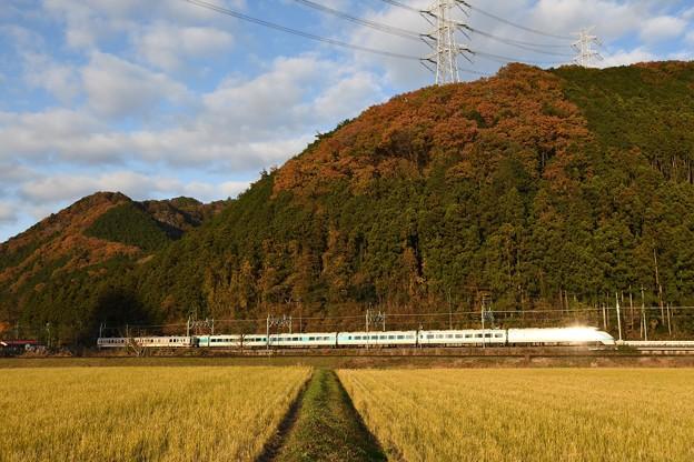 夕陽に輝く晩秋の東武日光線