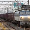 Photos: EF66 107号機牽引4093レ間々田通過