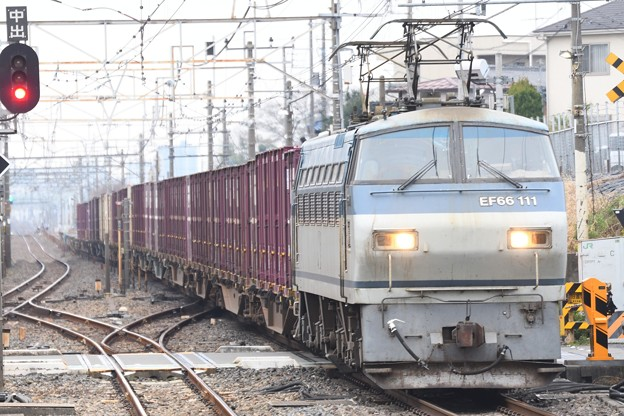 EF66 111号機牽引4093レ蓮田通過