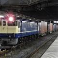 Photos: EF65 2101号機牽引4073レ小山11番待避中