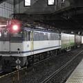 Photos: EF65 2095号機牽引4073レ小山11番待避