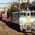 EF65 2127号機カラシ牽引74レ東所沢通過