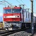 EH500-44号機牽引3054レ
