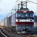 Photos: EH500-3号機牽引3050レ