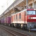 Photos: EH500-21牽引3074レ