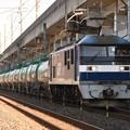 Photos: EF210-162代走8584レ
