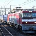 Photos: EH500-1牽引カンガルーライナー4059レ