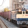 Photos: EF65 2067牽引84レ