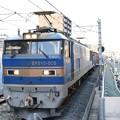 Photos: EF510-505牽引4076レ