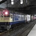 Photos: EF65 2086牽引4073レ小山11番待避