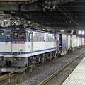 Photos: EF65 2057牽引4073レ小山11番待避