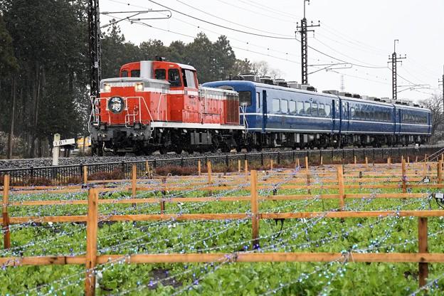 ミゾレ模様の東武鬼怒川線を行くDL大樹5号