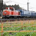 Photos: ミゾレ模様の東武鬼怒川線を行くDL大樹5号