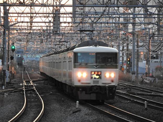 185系特急踊り子16号東京行き