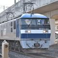 Photos: EF210 901単機4091レ