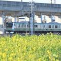 Photos: 菜の花と宇都宮線