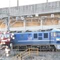 Photos: 岡山の桃太郎14号機 白帯2本新塗装