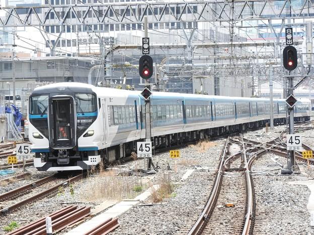 E257系2000番台特急踊り子4号東京9番入線