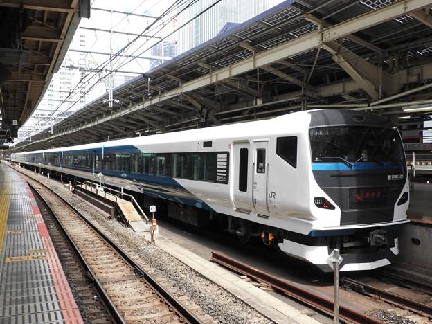 E257系2000番台踊り子4号東京到着