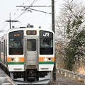 桜古木咲く思川駅