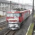 Photos: EH500-20牽引3074レ 雪の宇都宮貨物(タ)通過