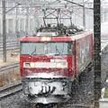 EH500-41牽引3086レ雪の宇都宮貨物(タ)通過