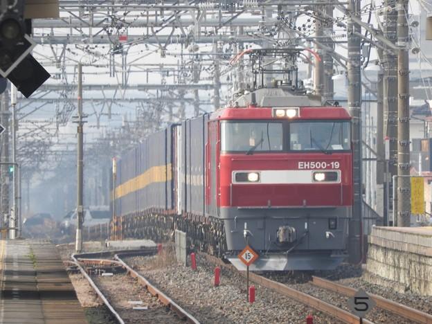 Photos: 金太郎19号機牽引カンガルーライナー4059レ接近
