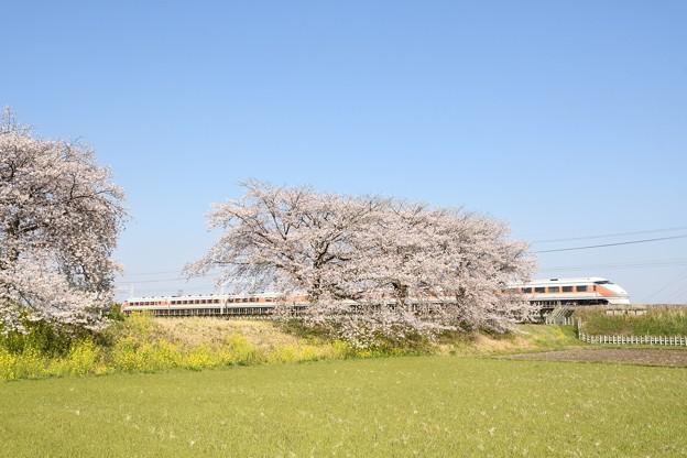 東武金崎思川桜堤を行くスペーシア