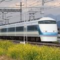菜の花の東武日光線スペーシア特急きぬ138号