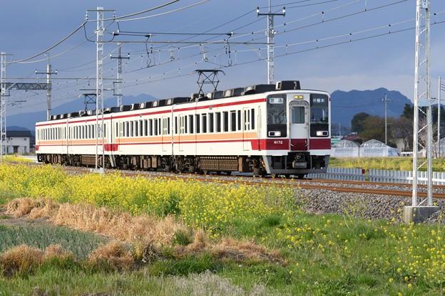 菜の花の東武日光線6050系新栃木行き