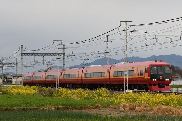 菜の花の東武日光線を行く253系