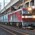 Photos: 金太郎6号機牽引トヨタロングパスエクスプレス4052レ