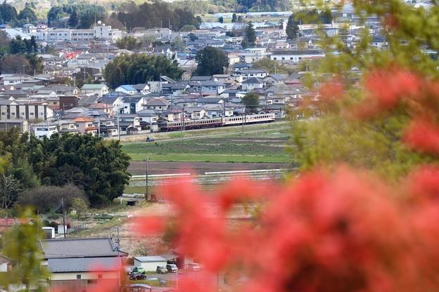 Photos: 花咲く鹿沼富士山公園から望む東武日光線