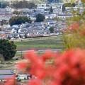花咲く鹿沼富士山公園から望む東武日光線