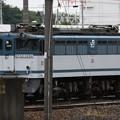 Photos: 宇都宮貨物(タ)にEF65 白プレート2094号機