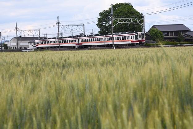 麦実る東武日光線を行く6050系