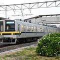 紫陽花咲く東武宇都宮線を行く20400型南栗橋行き
