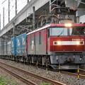 Photos: 金太郎29号機牽引トヨロン4052レ