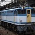 Photos: EF65 2127カラシ+空コキ 配8593レ小山11番発車