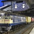 Photos: EF65 2081牽引4073レ小山11番待避
