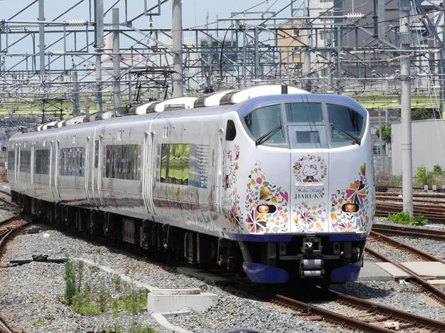 251系特急はるか27号新大阪3番入線