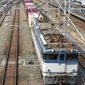 Photos: EF65 2095牽引75レ