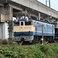 Photos: EF65 1115 + ホキ2B宇配8937レ