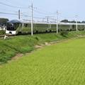 Photos: 久しぶりのTRAIN SUITE四季島♪