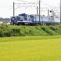 Photos: 北斗星カラー DE10 1109 初撮影♪