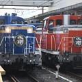 Photos: DE10北斗星カラーと原色の並び
