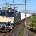 Photos: EF64 1021牽引1094レ武蔵野線吉川通過