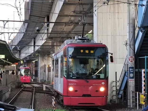 Photos: 都電荒川線8800形